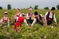 Вся правда о болгарской косметике...