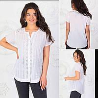 Коттоновая летняя женская батальная блуза-рубашка пр-во Индия (р.46-50). Арт-1834/9