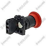 Кнопка безопасности с фиксацией Schneider Electric XB5AS542, SPST-NC, 40mm, фото 2