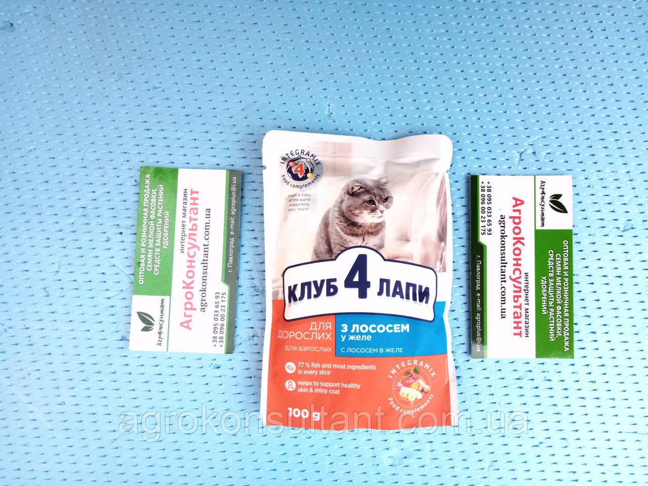 Влажный корм для котов Клуб 4 лапы с лососем 100 г.