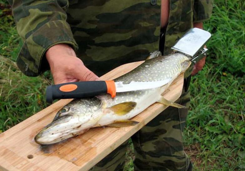 Доска для разделки рыбы с зажимом (бук) 278587-07-СТ