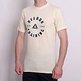 Чоловіча спортивна футболка Reebok, світло-сірого кольору, фото 3
