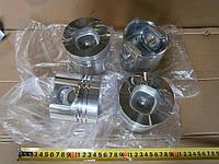Поршень двигателя (к-т) FOTON 1043 (3,7) ФОТОН 1043