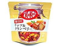Kit Kat Chocolate Bites Everyday Nuts & Cranberry 36 g