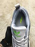 Мужские кроссовки Adidas Sharks White Gray, мужские кроссовки адидас шарк, фото 8