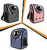 Рюкзак переноска для кота, собаки CosmoPet Шаттл. Все цвета в наличии!