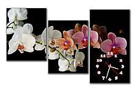 Красивые модульные часы картина на стену Белая и розовая орхидея в гостинную 30x40 30x41 30x57 см