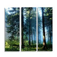 Модульная картина коллаж Трио Панорама Слим