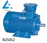 Взрывозащищенный электродвигатель В250S2 75кВт 3000об/мин