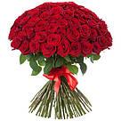 Букет с доставкой 3-101 свежие бордовые розы Кривой Рог, фото 8