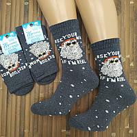 Мужские новогодние носки с махрой ТОП ТАП Житомир 27-29 ( 41-43) НМЗ-040478, фото 1
