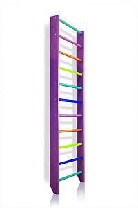 Шведская стенка SportBaby 0-240 (purple)