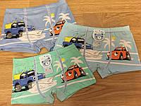 Трусы детские плавки, трусики из хлопка «Тачки Марвин» 4-9 лет