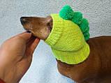 Одежда для собаки вязанная шапка для собаки Динозавр, фото 2