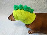 Одежда для собаки вязанная шапка для собаки Динозавр, фото 4