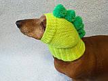Одежда для собаки вязанная шапка для собаки Динозавр, фото 7