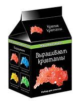 """Научные мини-игры """"Выращиваем кристаллы (красные)"""" 0337 12116002Р"""
