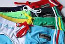 Двухцветные яркие плавки с надписью Desmit, фото 4