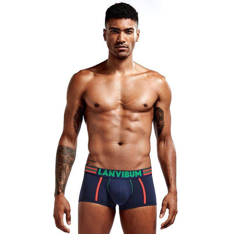 Стильные мужские трусы боксеры Lanvibum