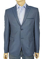 Мужской стильный пиджак Daniel Perry Hislan C-A.3