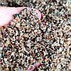 Грунт Hagen 1-2мм для аквариума 1кг, фото 3