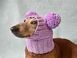 Шапка для собаки с двумя помпонами одежда для собак, фото 4