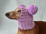 Шапка для собаки с двумя помпонами одежда для собак, фото 5