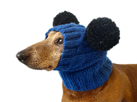 Шапка для собаки с двумя помпонами одежда для собак