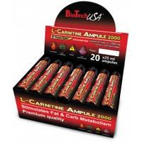 Biotech Europe 2000 mg L-Carnitine Ampoule 20x25 ml