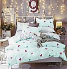 Комплект постельного белья Хлопковый Молодежный 018 Luna Home 9378 Синий, Розовый, Зеленый, фото 2