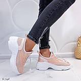 Кроссовки женские розовые (пудра)/ персиковые эко-кожа + текстиль, фото 6