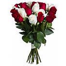 Букет с доставкой 3-101 свежие белые розы Кривой Рог, фото 5