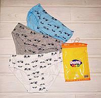 Трусики для мальчика Domi 7200 комплект 3 шт в упаковке 134-140