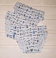 Трусики для мальчика Donella 76569 голубой размер 98 110
