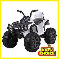 Квадроцикл Электро для детей от 3х лет    M 3156EBLR-1