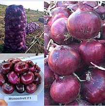Семена лука репчатого Монастрел F1 (25 000 сем.) Enza Zaden