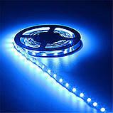 Стрічка синя 4,8W/м 60LED/м IP20 світлодіодна 8mm MTK-300B3528-12 №1, фото 2