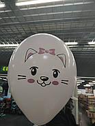 """Латексные шары круглые с рисунком 14"""" милые котята, фото 4"""