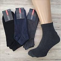 Мужские носки короткие демисезонные  Житомир КОІ 29-31р ассорти с серым  НМД-0510313