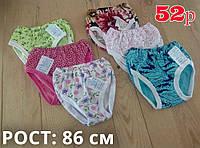 Детские трикотажные трусы для девочек Украина 52 размер / 86 см рост ассорти ТДП-2824