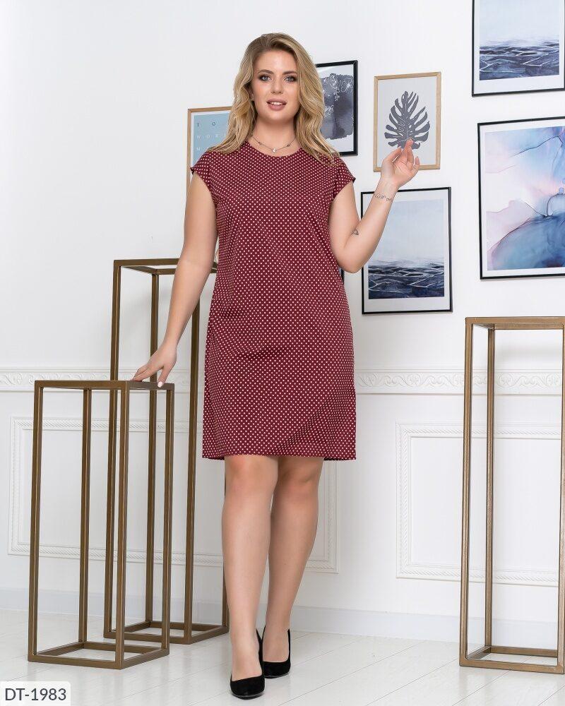 Стильное платье   (размеры 50-56) 0244-23