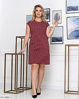 Стильное платье   (размеры 50-56) 0244-23, фото 1