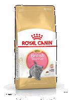 Сухой корм Royal Canin British Shorthair Kitten 2 кг для котят породы британская короткошерстная до 12 мес