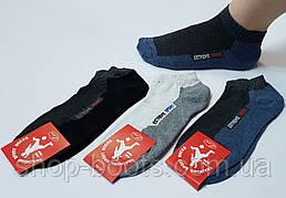 Мужские носки оптом. Модель мужские носки 15