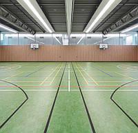 Спортивні покриття Marmoleum Sport -83212, фото 2