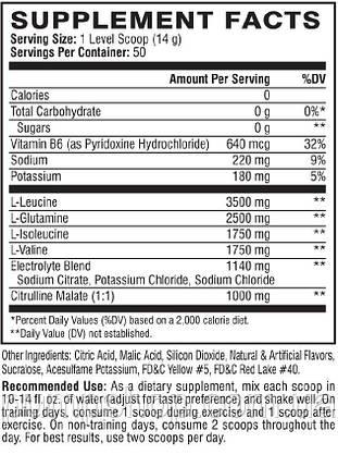 Аминокислоты BCAA Scivation Xtend BCAAs 650 г (50 порц.), фото 2