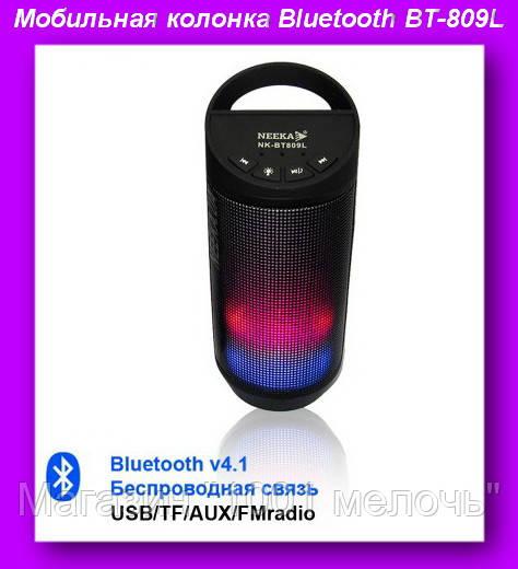 Мобильная колонка Bluetooth BT-809L,Радиоприемник колонка с Bluetooth