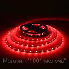 Лента светодиодная красная LED 3528 Red 60RW - 5 метров в силиконе, фото 3