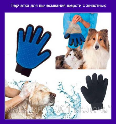 Перчатка для вычесывания шерсти с животных, фото 2