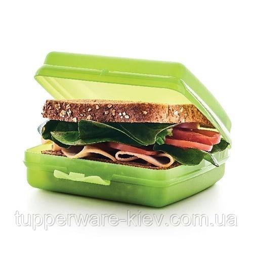Ланч-бокс, бутербродница 14 х 13 х 5 см